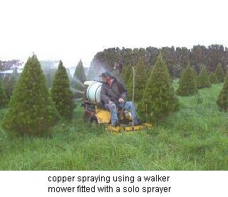 Christmas Tree Sprayer.Production Mount Gabriel Christmas Tree Farms